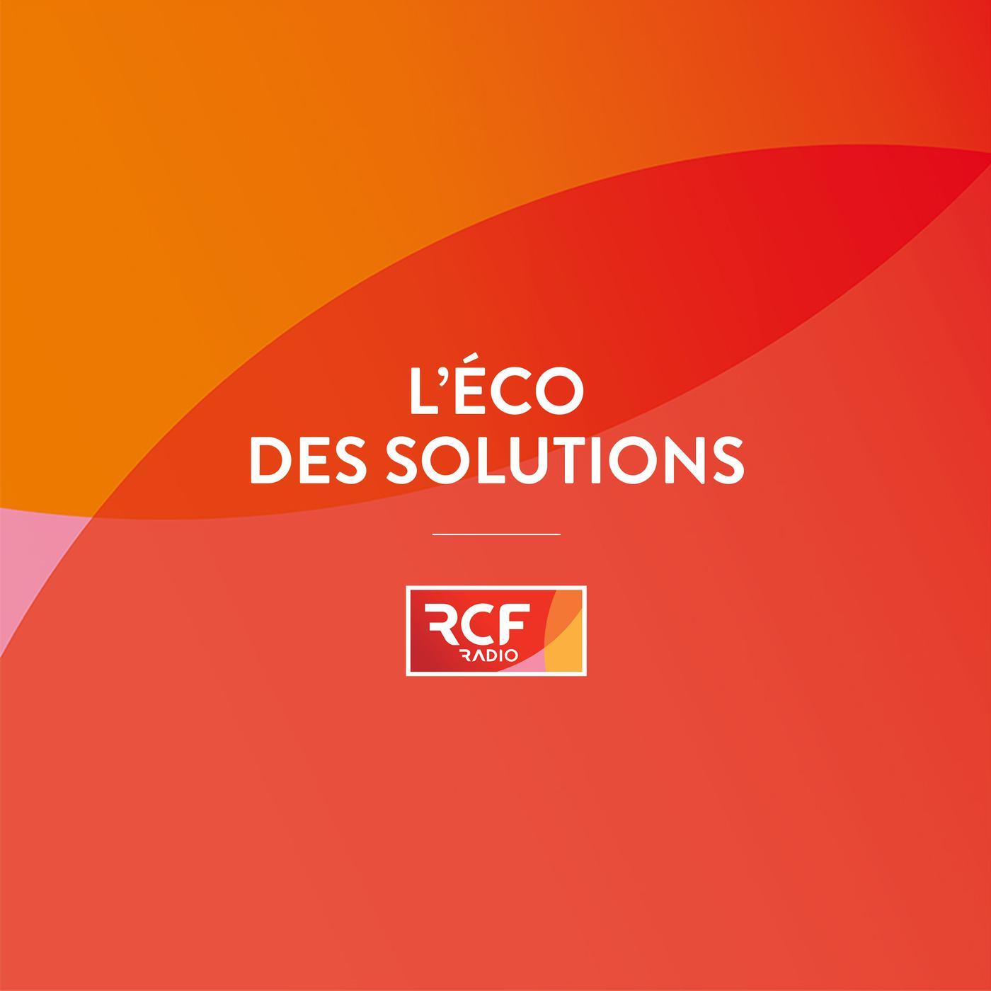 L'Eco des solutions, l'émission de Patrick Lonchampt